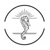 2x Tampon à cire rond 30mm – matrice laiton – manche Palissandre -  gravure motif  : DESORS-01.jpg